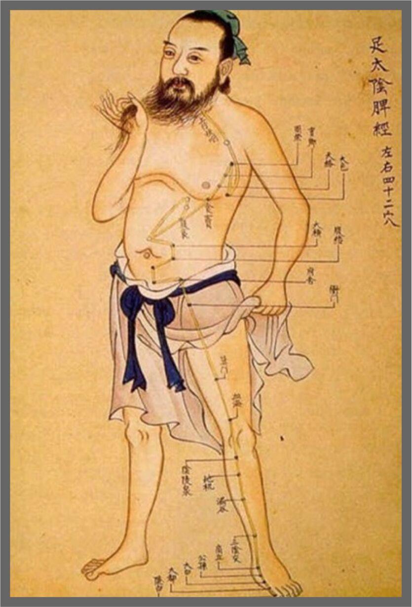 tradicionalna-kineska-medicina_preview
