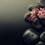 Tradicionalna kineska medicina gostuje u Medikolu